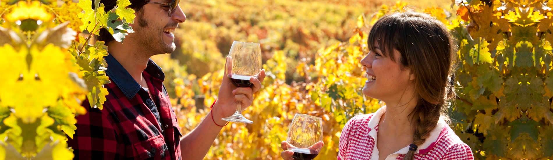 destacado_vino2