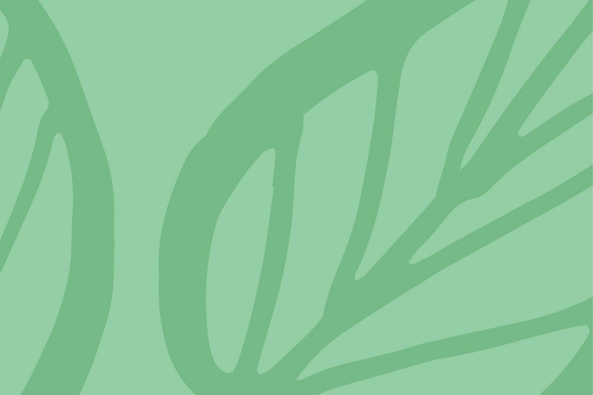 MonoGráfica Eco Branding
